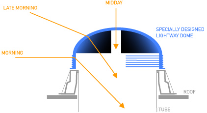The functionality of the dome